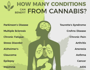 Benefit From Cannabis Now