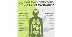 The Benefits of Cannabis for you